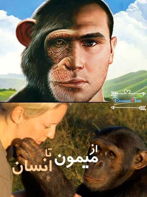 Ape To Man - مستند از میمون تا انسان با دوبله فارسی